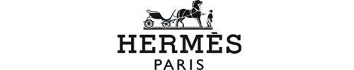 Hermes500100
